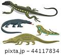 Reptile and amphibian colorful fauna vector illustration reptiloid predator reptiles animals. 44117834