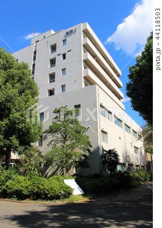 千葉大学 自然 44118503