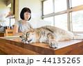 ねこ ネコ 猫の写真 44135265