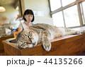 ねこ ネコ 猫の写真 44135266