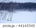 雪原 雪景色 雪の写真 44143345