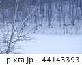 雪原 雪景色 雪の写真 44143393