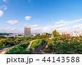 (静岡県)浜松城から望む浜松の街並み 44143588