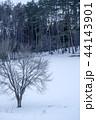 雪原 雪景色 木の写真 44143901