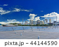 横浜 みなとみらい 大さん橋の写真 44144590