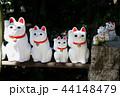 豪徳寺の招き猫 44148479