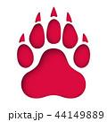くま クマ 熊のイラスト 44149889