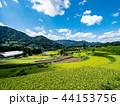 晴れ 田園 風景の写真 44153756
