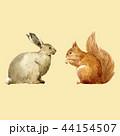 うさぎ ウサギ 兎のイラスト 44154507