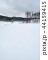 雪原 雪景色 木の写真 44159415