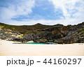 小笠原諸島 南島 小笠原の写真 44160297