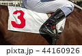 Jockey in the saddle 44160926