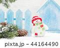 クリスマス 樹木 樹の写真 44164490