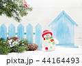 クリスマス 樹木 樹の写真 44164493