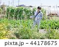 男性 1人 農作物の写真 44178675