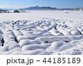 冬 積雪 雪景色の写真 44185189