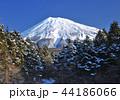 風景 富士山 世界遺産の写真 44186066