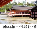 厳島神社 宮島 世界遺産の写真 44191446