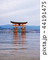 厳島神社 鳥居 広島の写真 44191475