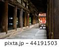 厳島神社 宮島 世界遺産の写真 44191503