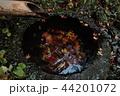 古都鎌倉の秋 晩秋の瑞泉寺⑤ 44201072