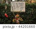 古都鎌倉の秋 晩秋の明月院⑫ 44201660