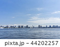東京湾 風景 海の写真 44202257