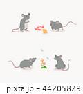 鼠 ねずみ マウスのイラスト 44205829