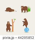 動物 くま クマのイラスト 44205852
