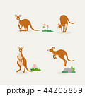 Animal icons collection vector illustration 063 44205859