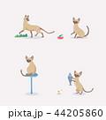 イラストレーション 動物 ねこのイラスト 44205860