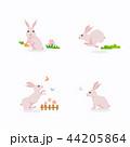 動物 うさぎ ウサギのイラスト 44205864