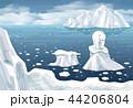 くま クマ 熊のイラスト 44206804