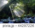 夫婦滝 滝 光芒の写真 44207226