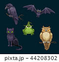 Halloween cat, bat and owl, crow and frog animals 44208302