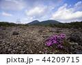 韓国岳 44209715