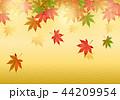 紅葉 秋 葉のイラスト 44209954