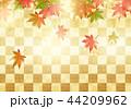紅葉 秋 市松模様のイラスト 44209962