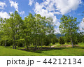 自然 風景 晴れの写真 44212134