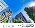 新緑 夏 ビル群の写真 44218852