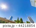 新緑 夏 ビル群の写真 44218854