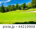 ゴルフコース パッティンググリーン 44219908