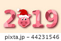 Christmas Pig Portrait in Santa Hat, Symbol Chinese New Year 2019 44231546