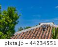 琉球瓦 屋根 竹富島の写真 44234551