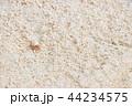 沖縄の砂浜 ヤドカリ 背景素材 南国イメージ 44234575