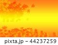 紅葉の背景 44237259
