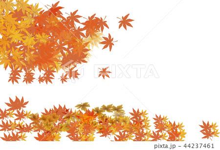 紅葉の背景 44237461