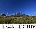 ススキ 富士山 山の写真 44243359