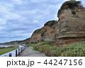 屏風ヶ浦 海岸線 水郷筑波国定公園の写真 44247156