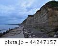 屏風ヶ浦 海岸線 地層の写真 44247157